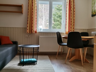 3 room apartment with balcony (pets allowed)