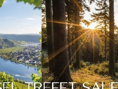 5 day MOSEL TREFT SAUERLAND package